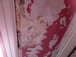 wallpaper-damage-project-kennedy-painting-st-louis-3-before