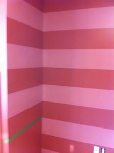 Stripes Tarantola